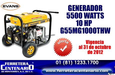 Generador 5500 watts 10HP EVANS con super descuento!!