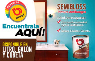 Pintura Antihongos Berel Semi-gloss